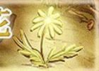「ゴールデンロアV」魂の宝珠などがもらえるイベント「山奥に咲く生命の花」が開始!