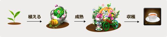 「ドラゴンアウェイクン」光翼「妖緑の翼」などが手に入るイベント「初夏の華麗なるお茶会」が開催!